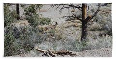 One Deer On A Dry Mountain Beach Towel