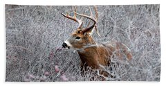 Deer On A Frosty Morning  Beach Towel