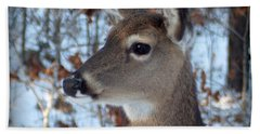 Deer Portrait Beach Sheet