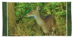 Deer Surprise Beach Sheet