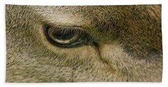 Deers Gentle Eye Beach Towel