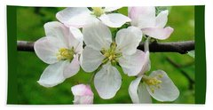 Delicate Apple Blossoms Beach Towel