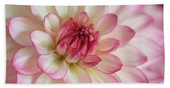 Delicate Dahlia Beach Sheet by Rachel Cohen