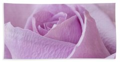 Delicate Lavender Rose Macro Beach Towel by Sandra Foster