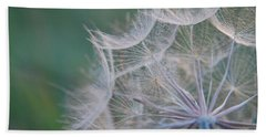 Beach Sheet featuring the photograph Delicate Seeds by Amee Cave