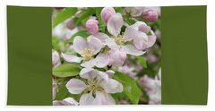 Delicate Soft Pink Apple Blossom Beach Towel by Gill Billington