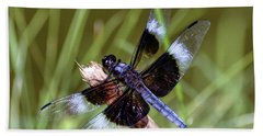 Beach Sheet featuring the photograph Delicate Wings Of A Dragonfly by Kerri Farley