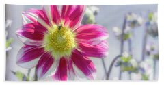 Beach Towel featuring the photograph Delicious Dahlia by Belinda Greb