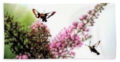 Beach Sheet featuring the photograph Delight And Joy - Hummingbird Moths In Flight by Kerri Farley