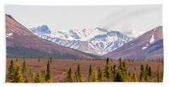 Denali Wilderness Beauty Beach Sheet by Allan Levin