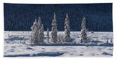 Beach Sheet featuring the photograph Des Merveilles D'hiver by Dustin LeFevre