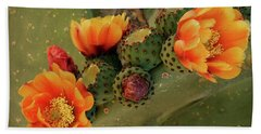Beach Towel featuring the photograph Desert Flame by Lucinda Walter