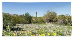 Beach Towel featuring the photograph Desert Flowers And Cactus by Ed Cilley
