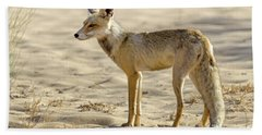 desert Fox 02 Beach Towel