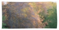 Desert Ironwood Blooming In The Golden Hour Beach Towel