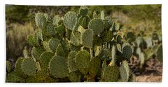Beach Towel featuring the photograph Desert Prickly-pear No6 by Mark Myhaver
