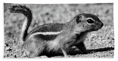 Scavenger, Black And White Beach Towel