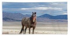 Desert Wild Horse Beach Towel