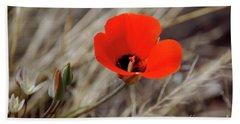 Desert Wildflower Beach Sheet