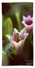 Detail Of Pink And White Oriental Lilies In Sunlight. Beach Towel