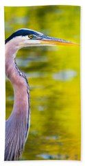 Beach Towel featuring the photograph Details Of A Great Blue Heron  by Parker Cunningham
