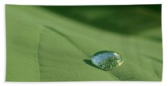 Dew Drop Beach Sheet