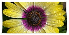 Dew Dropped Daisy Beach Towel