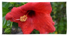 Dew On Flower Beach Towel