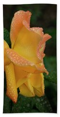 Beach Towel featuring the photograph Dewy Rose by Jean Noren