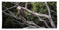Diamond Highway Eagle Beach Towel by Richard Bean