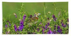 Dickcissel - 8256 Beach Sheet
