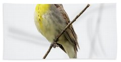 Dickcissel  Beach Towel