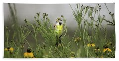 Beach Towel featuring the photograph Dickcissel With Mexican Hat by Robert Frederick