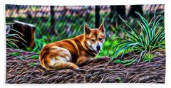 Dingo From Ozz Beach Towel by Miroslava Jurcik
