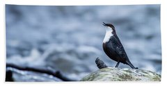 Beach Towel featuring the photograph Dipper's Call by Torbjorn Swenelius