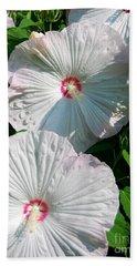 Dish Flower Beach Sheet