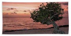 Divi Divi Aruba Beach Sheet