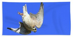 Diving Kestrel  Beach Towel