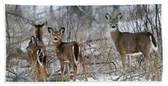 Does And Fawns Beach Towel by Brook Burling
