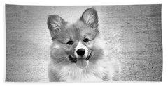 Puppy - Monochrome 6 Beach Sheet