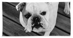 Dog - Monochrome 6 Beach Sheet