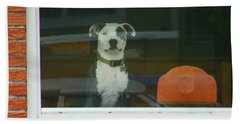 Doggie In The Window Beach Sheet by Lenore Senior