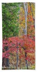 Dogwood And Cedar Beach Towel