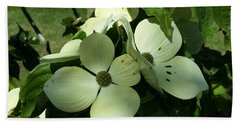 Dogwood Flowers Beach Sheet