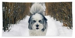 Doing The Dog Walk Beach Towel by Keith Armstrong