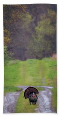 Beach Towel featuring the photograph Doing The Turkey Strut by Susan Rissi Tregoning