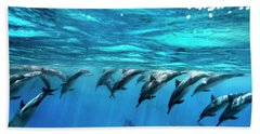 Dolphin Dive Beach Towel