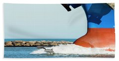 Dolphin Guides Beach Towel