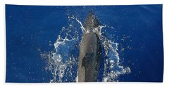 Dolphin Beach Sheet by J R Seymour
