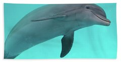 Dolphin Beach Towel by Sandy Keeton